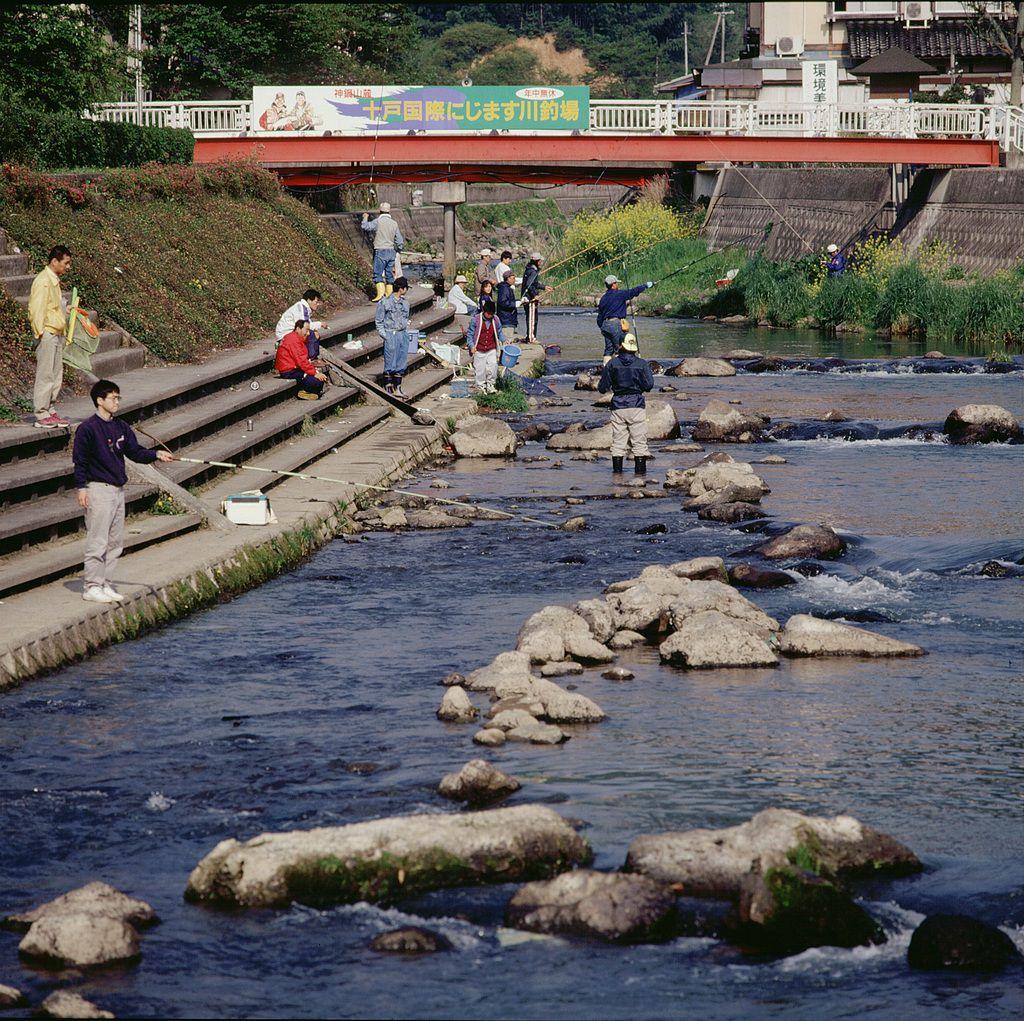 十戸虹鱒川釣り場