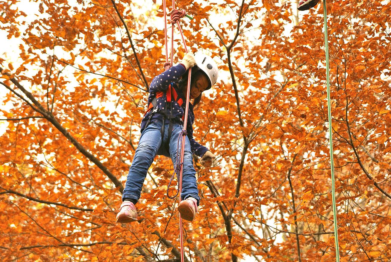 ロープで木登りツリーイング